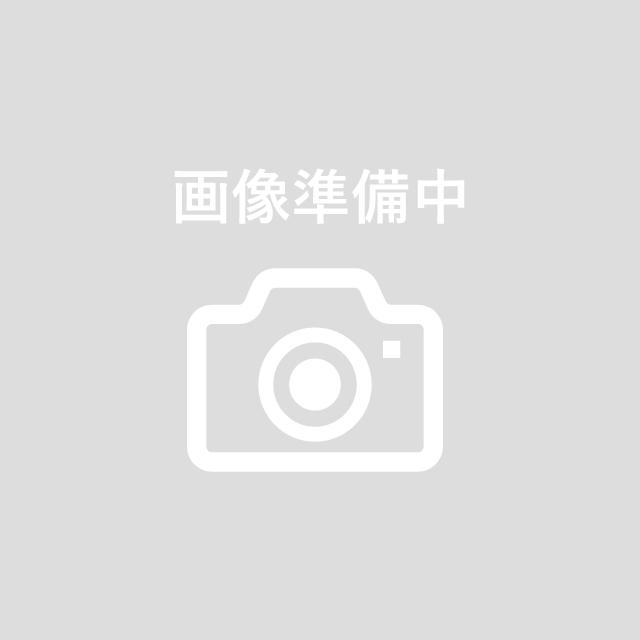 ソロマット K120 カバ玉