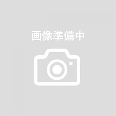 日商・日珠連  両面プリント 7級